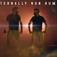 Internally Non Human